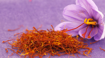 Bulb Size of Crocus Sativus versus Saffron yield